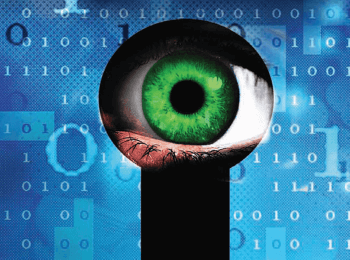Shifting the Risk of Cybercrime
